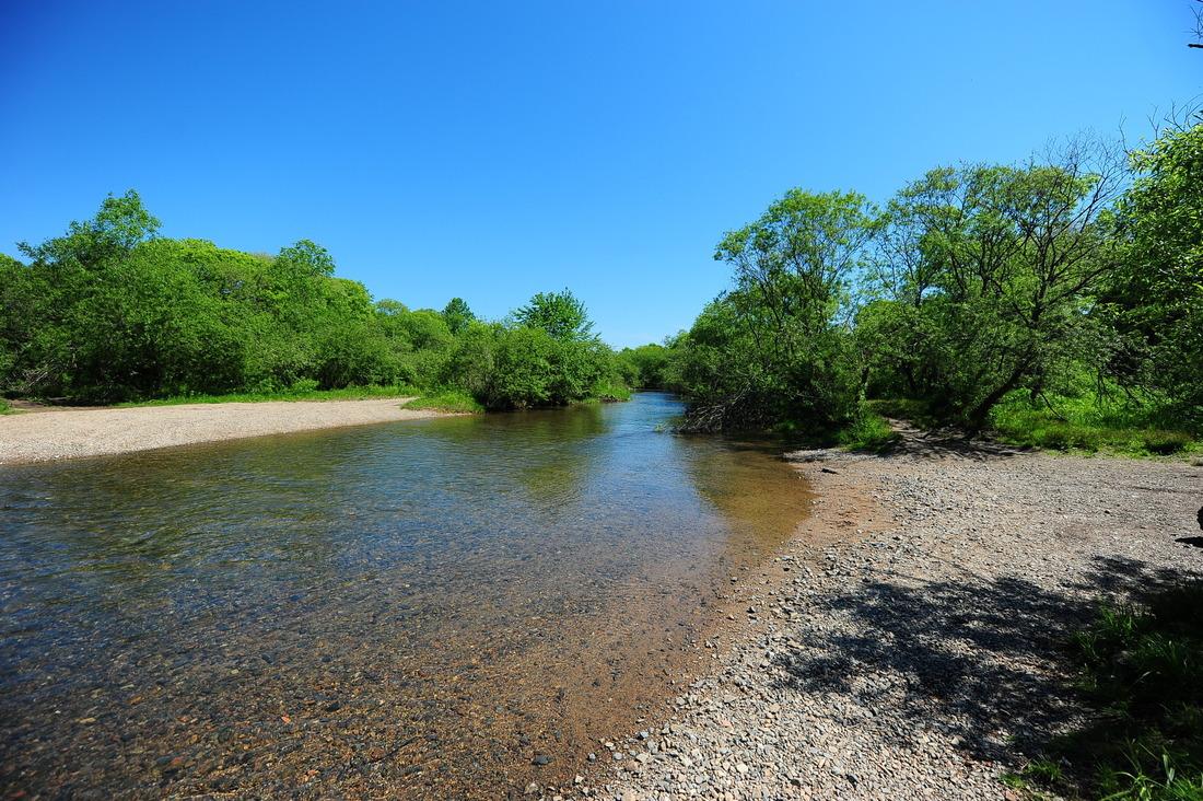 Картинки чистая речка